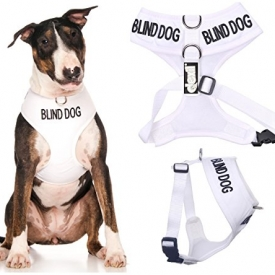 Blind Dog White Color Coded Non-Pull Harness