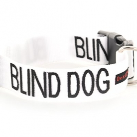 Blind Dog White Color Coded Alert Warning Collar
