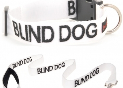 Blind Dog Collars and Harnesses