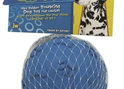 JW Pet Giggler Ball Dog Toy Review